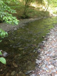 ruisseau Roche-Mouselle